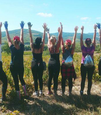 uczestnicy zbiorów winogron